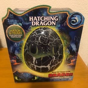 How To Train Your Dragon Hatching Dragon